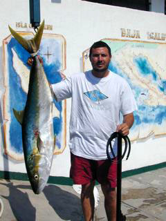 Ricardo Yellowtail