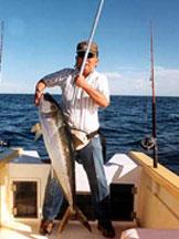 Baja mosquito fleet for Reward fishing fleet